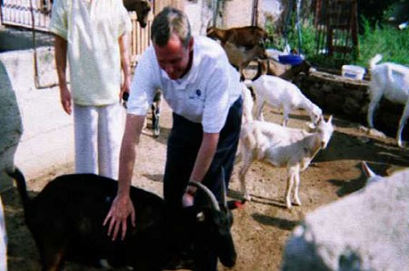 Goats and other livestock are helping Croatians recover from war and look toward a sustaining faith. The animals are being donated by children's missions organizations via Project MOST, an initiative of Woman's Missionary Union.